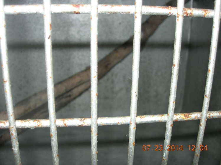 2519 Cat enclosures rusted, stick inside cage