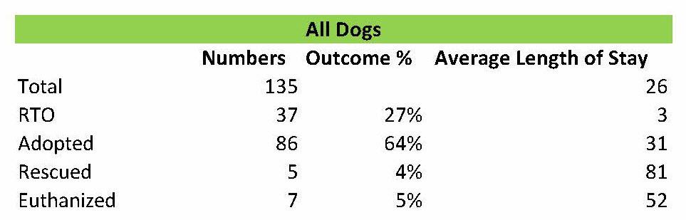 All Dogs Perth Amboy 2014