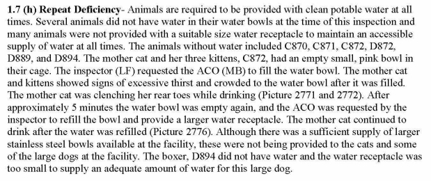 EO Water to Animals