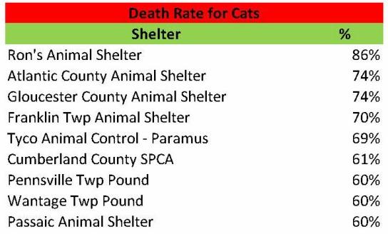 Cat Death Rate 2014