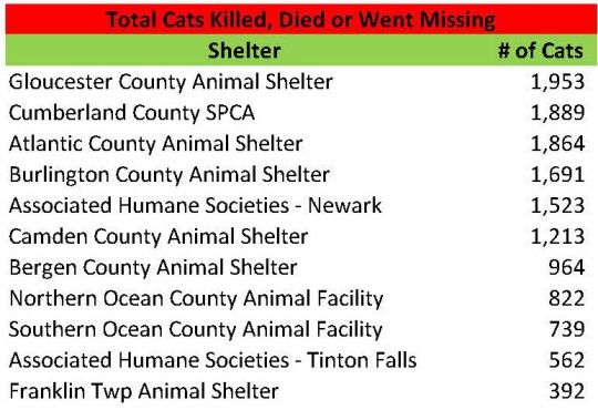 Total Killed Died 2014 Cats