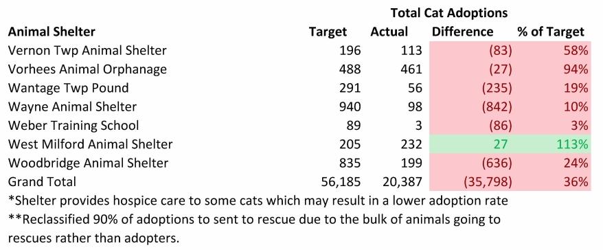 2014 Cat adopt (3)