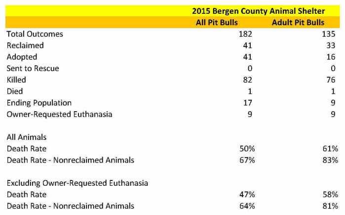 Bergen Pit Bull Data