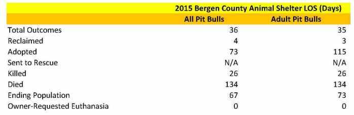 Bergen Pit Bulls LOS