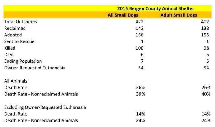 Bergen Small Dog Data.jpg
