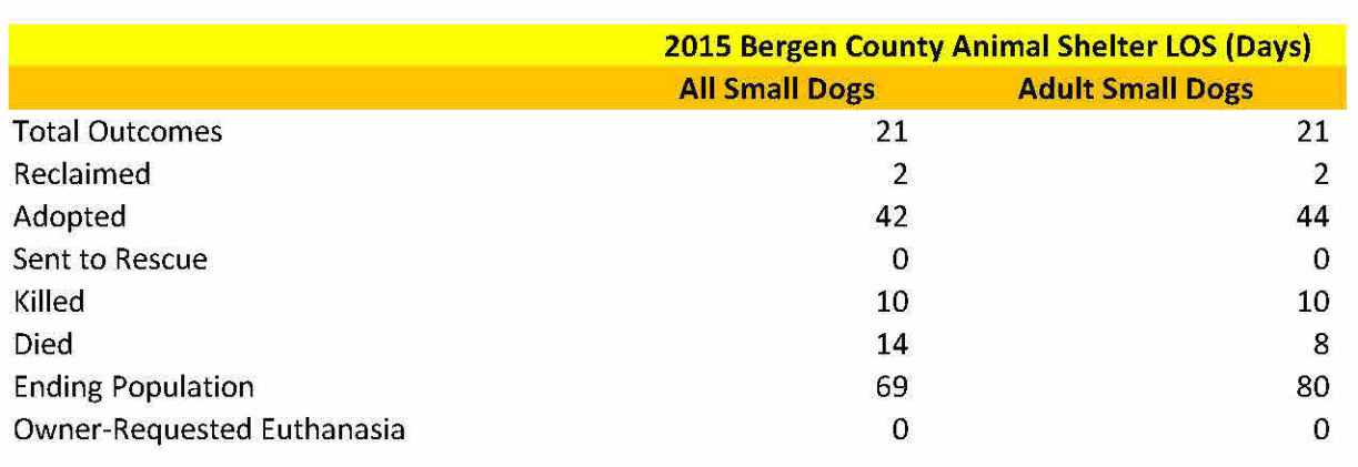 Bergen Small Dogs LOS