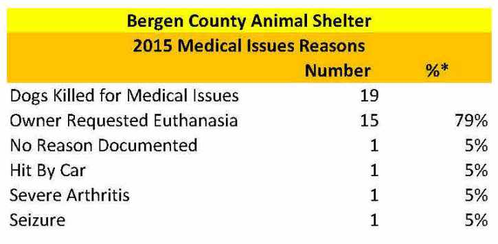 Bergen Medical Issues Dogs Reasons