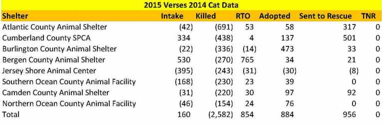 Cats shelter 2015 vs 2014