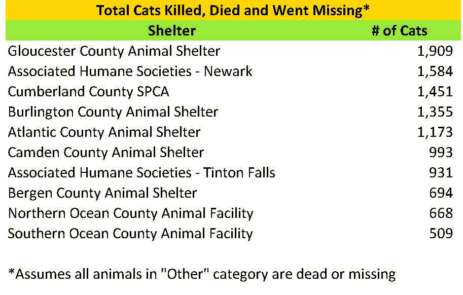 2015 cats killed died