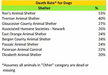 2015 dog death rate