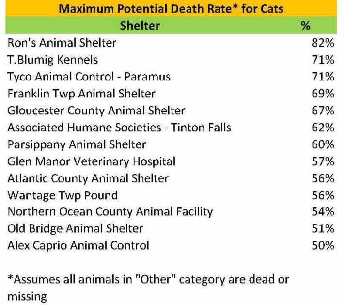 2015 max pot cats.jpg