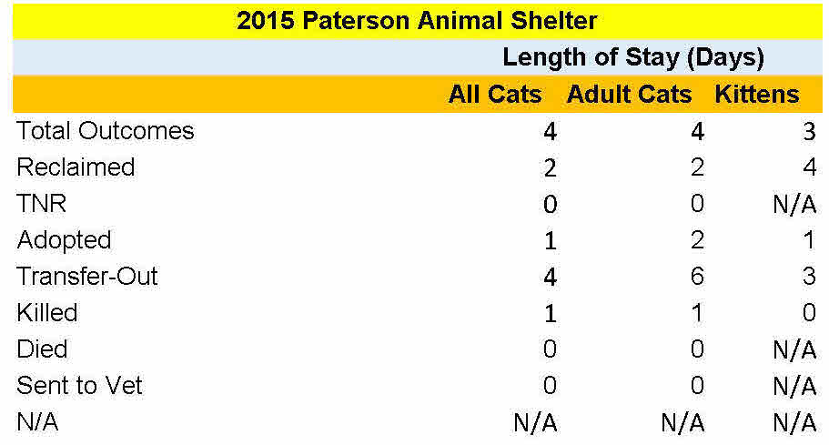 paterson-cats-los