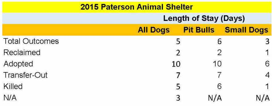 paterson-dogs-los