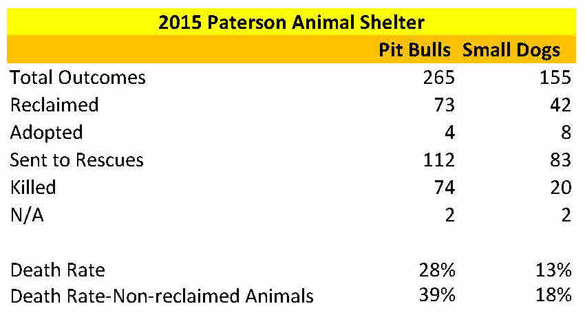 paterson-animal-shelter-2015-intake-and-disposition-records-final-10