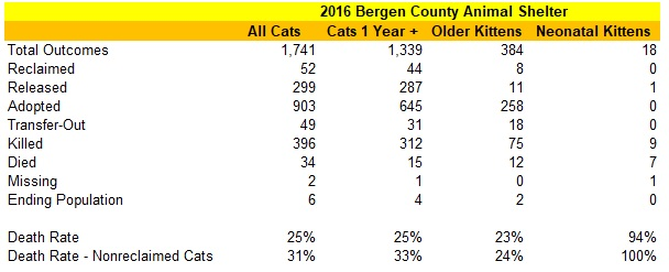 2016 Bergen County Animal Shelter Cat Statistics By Age.jpg