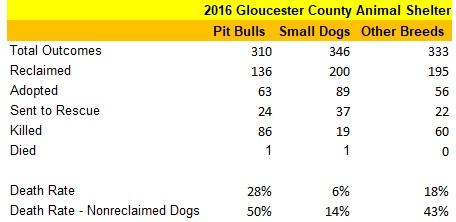 GCAS 2016 Dog Statistics