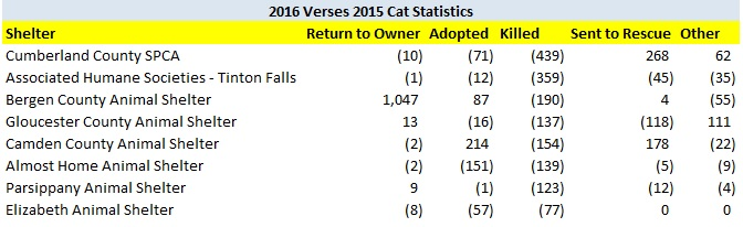 2016 Verses 2015 Cat LR Improve Shelter Outcomes.jpg