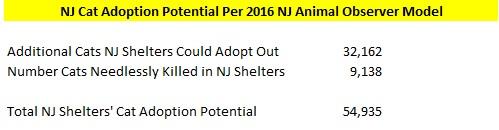 NJ Cat Adoption Potential - NJ Animal Observer Model