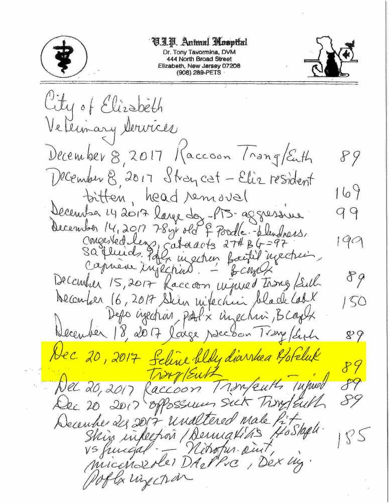 18-K Elizabeth Animal Shelter Veterinary Invoice
