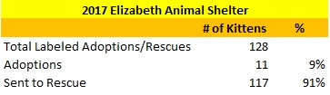 2017 Elizabeth Animal Shelter Kittens Sent to Rescue and Adopted