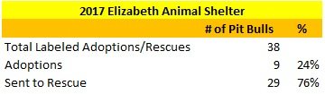 2017 Elizabeth Animal Shelter Pit Bulls Sent to Rescue and Adopted Out