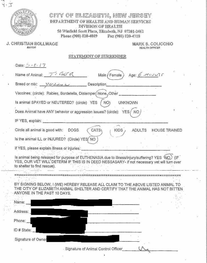 4-J Cat Elizabeth Animal Shelter Surrender Form.jpg