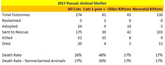 2017 Passaic Animal Shelter Cat Statistics.jpg