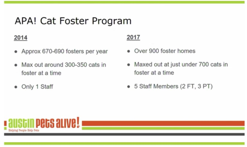 APA Cat Foster Program Size