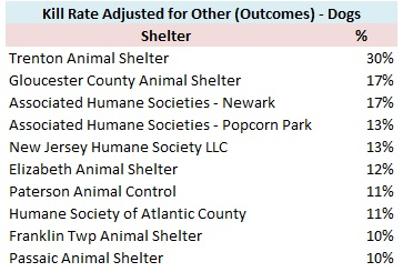 NJ Animal Observer | Promoting innovative and progressive