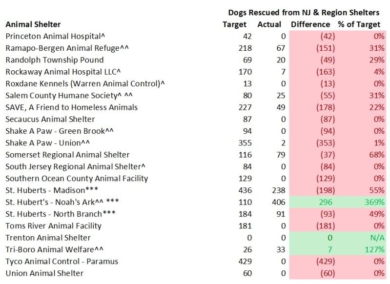 2018 Dog Model Rescue Dogs 4.jpg